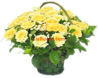 爱是一辈子的承诺/9枝香槟玫瑰:29枝黄玫瑰/每一天都快乐