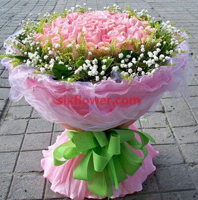 羞涩感觉/51枝粉色玫瑰