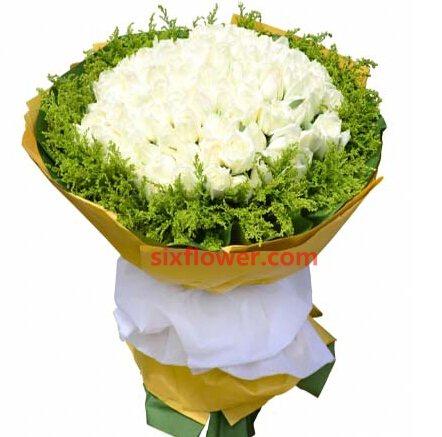 为你而心跳/99枝白玫瑰