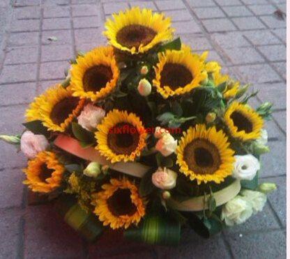 永不腿色的祝福/19枝玫瑰绣球花:16枝向日葵/光明照耀着我们