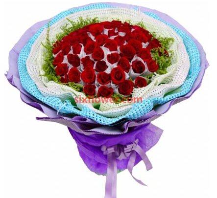 50枝玫瑰/一剪梅:爱你最重要的事/66枝红色玫瑰