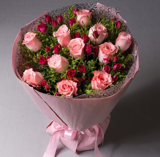 19枝康乃馨/妈妈的关爱:一心一意爱的宣言/11枝粉色玫瑰