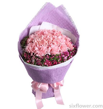 开心的祝愿/5枝向日葵:18枝粉康/生命气息