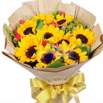 特别的问候/38枝玫瑰:幸福奔腾不休/9枝向日葵