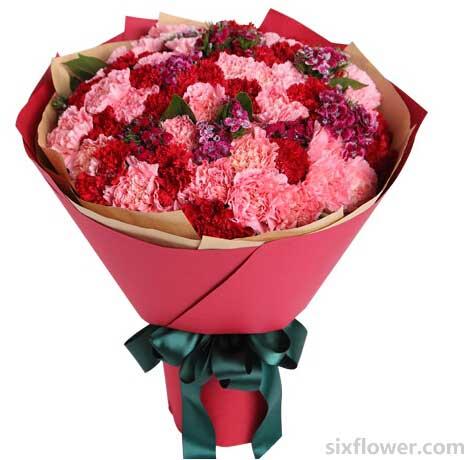 特别的问候/38枝玫瑰:康乃馨共66枝/恩情永远