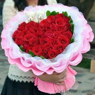 33枝红色玫瑰/一生情,永不变