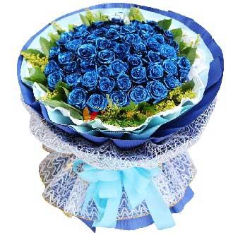 温柔的眼神/52枝蓝玫瑰