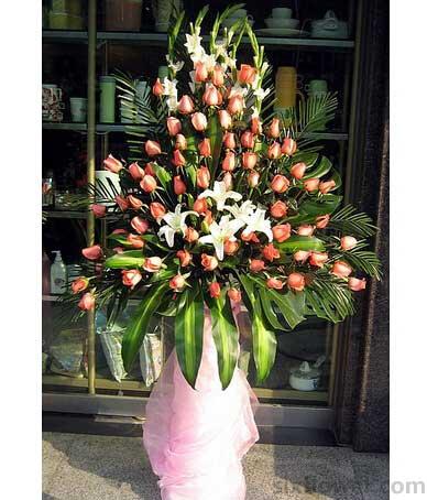 50枝粉玫瑰/开业庆典