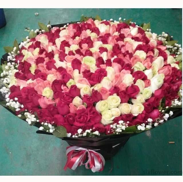 365枝各色玫瑰/年年天天想着你