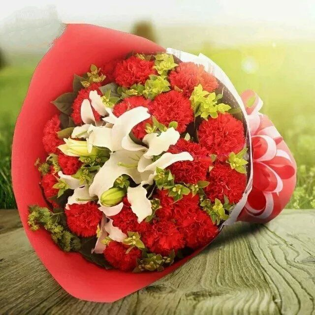 5枝向日葵/温暖:18枝红色康乃馨/一切美好如初