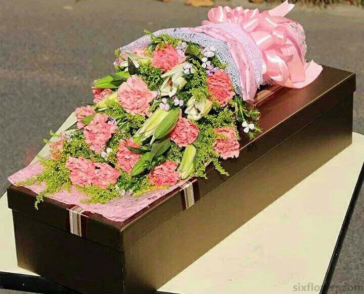 15枝粉色康乃馨/温暖你的心头