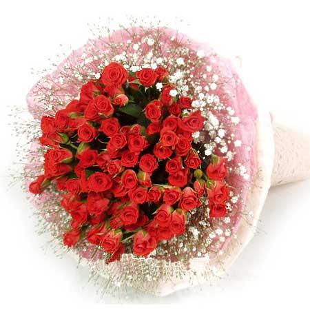 坚定的爱/52枝红玫瑰