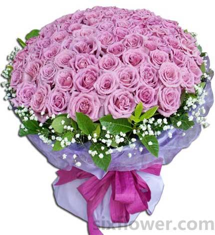 紫色浪漫/99枝紫玫瑰