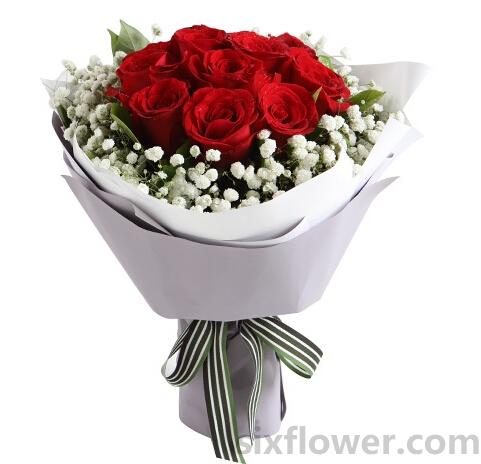 红玫瑰11枝/想把你捧在手心