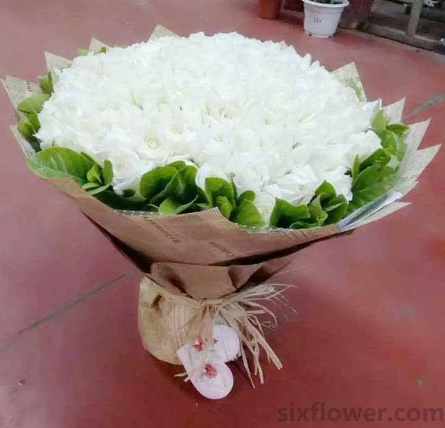 淡淡的墨色/99枝白色玫瑰