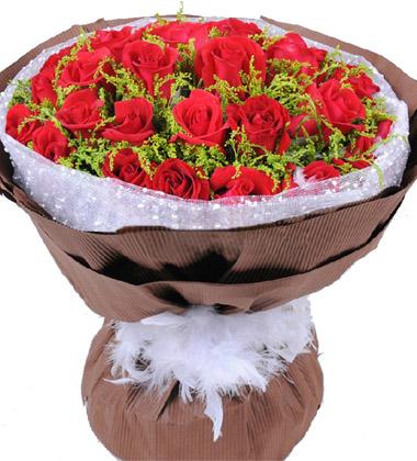 相约雀桥/33枝红玫瑰