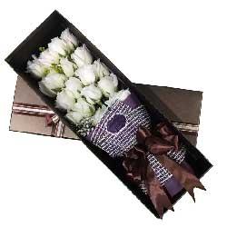 爱你的感觉真的妙不可言/18枝白色玫瑰礼盒