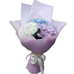 特别的问候/38枝玫瑰:祝你常开心/3只绣球花
