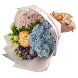 开心的祝愿/5枝向日葵:亲情的包围/12枝玫瑰,桔梗一扎,绣球搭配