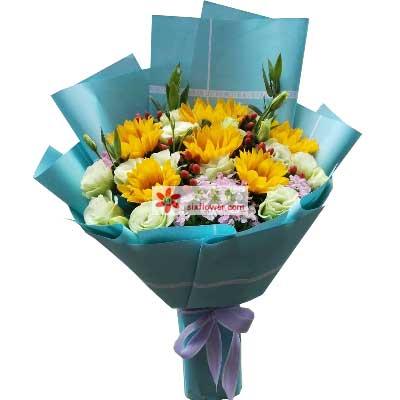 最美好的愿望遥寄给你/6枝向日葵