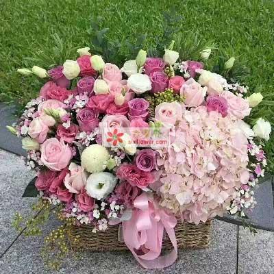 你的快乐健康是我最多的期盼/60枝玫瑰