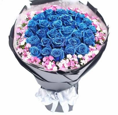 飞到您身边天使/33枝蓝玫瑰