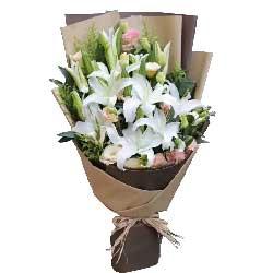 声声祝福9枝多头白色百合,9枝粉色康乃馨