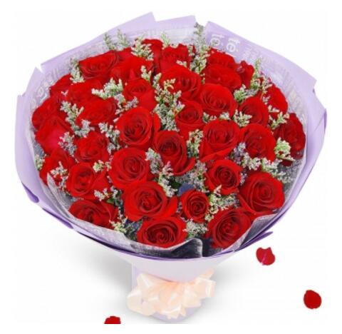 完美爱情/33枝玫瑰花