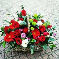 永恒的亲情/29枝红色玫瑰,4枝扶朗,4枝桔梗