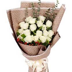 爱的企盼/17枝白色玫瑰