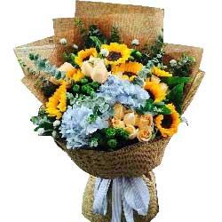 香槟玫瑰20枝/祝您身体健康,幸福永远!:芳华永存/19枝香槟玫瑰,8枝向日葵
