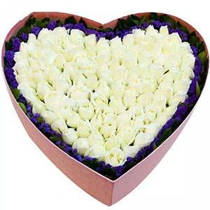 甜蜜的爱情港湾/99枝香槟玫瑰:牵挂美丽的你/99只玫瑰礼盒
