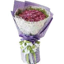 19枝粉玫瑰/青春美丽:沧桑岁月有你就好/66枝紫色玫瑰