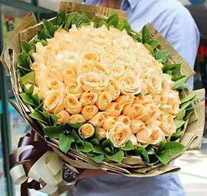 我们的世界/99枝香槟玫瑰