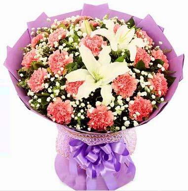 温馨与幸福/8枝粉色多头百合:21枝粉色康乃馨/遥远的祝福