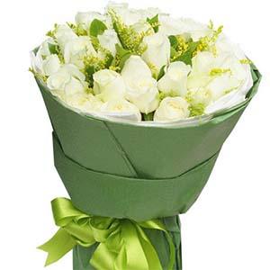 祝愿你幸福/33枝白玫瑰