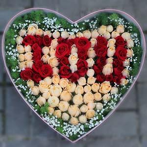50枝玫瑰/一剪梅:很自然想你/99枝玫瑰