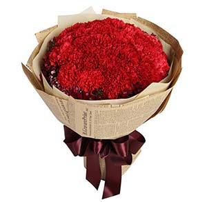 想你/19枝康乃馨礼盒:我的祝福永恒地留在您心中/红色康乃馨33枝