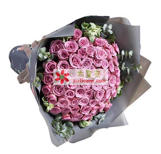 你的魅影在我心中/66枝紫玫瑰