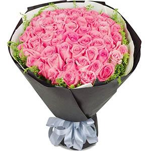 33枝粉玫瑰/一声问候