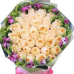 33枝玫瑰/我的思念:心灵相通/33枝香槟玫瑰