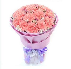 开心的祝愿/5枝向日葵:永恒的幸福/19枝粉色康乃馨