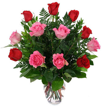 爱不是怀念/12枝玫瑰