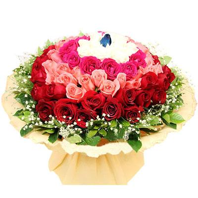 你是我的世界/99枝多色玫瑰