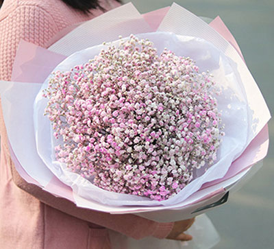 33枝玫瑰/我的思念:命运让我们相遇/粉白混色满天星一大扎