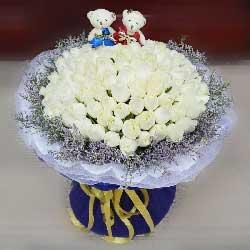 你是我的白雪公主/66枝白玫瑰