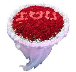 365枝玫瑰/我的爱你看得见