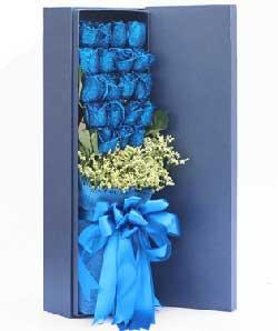 19枝蓝色玫瑰/天长地久