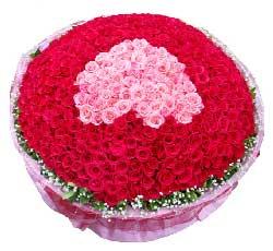 999枝玫瑰/心在一起