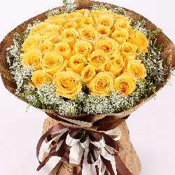 谢谢您/33枝黄玫瑰